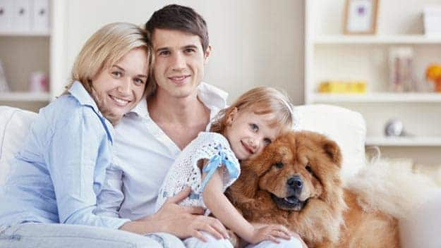 Wills & Trusts dog-young-family Direct Wills Highams Park